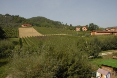 Greo-Lucca_006